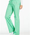 Photograph of Luxe Women Low Rise Straight Leg Drawstring Pant Green 1066-SPCT
