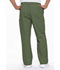 Photograph of Dickies EDS Signature Men's Zip Fly Pull-On Pant in Olive