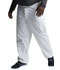 Photograph of Dickies EDS Signature Men's Zip Fly Pull-On Pant in White