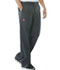 Photograph of Dickies Evolution NXT Men's Men's Elastic Waist Cargo Pant Gray 81100-PTWZ