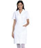 Photograph of Dickies Professional Whites Button Front Dress in White