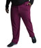 Photograph of EDS Essentials Men's Men's Natural Rise Drawstring Pant Red DK015-WNPS