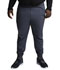 Photograph of Dynamix Men's Men's Natural Rise Jogger Pant Gray DK040-PWT