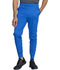 Photograph of Dickies Dickies Dynamix Men's Natural Rise Jogger in Royal