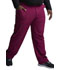 Photograph of Dynamix Men's Men's Zip Fly Cargo Pant Red DK110-WIN