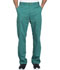 Photograph of Dickies Essence Men's Drawstring Zip Fly Pant in Hunter Green