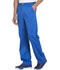 Photograph of Dickies Essence Men's Drawstring Zip Fly Pant in Royal