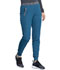Photograph of Dickies Dickies Dynamix Natural Rise Tapered Leg Jogger Pant in Caribbean Blue