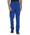 Photograph of Dickies Advance Men's Straight Leg Zip Fly Cargo Pant in Galaxy Blue
