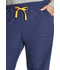 Photograph of Dickies Dickies Dynamix Mid Rise Jogger in Navy