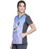Photograph of Licensed Prints Women's V-Neck Top Minions Rainbow TF637-DPMR