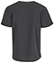 Photograph of Bliss Men's Men's V-Neck Top Gray 16600A-PWCH