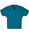 Photograph of WW Originals Unisex Unisex V-Neck Tunic Blue 4777-CARW