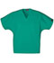 Photograph of WW Originals Unisex Unisex V-Neck Tunic Green 4777-SGRW