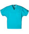 Photograph of WW Originals Unisex Unisex V-Neck Tunic Blue 4777-TRQW