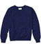 Photograph of Classroom Child's Unisex Youth Unisex Long Sleeve V-neck Sweater Blue 56702-DNVY