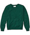 Photograph of Classroom Child's Unisex Youth Unisex Long Sleeve V-neck Sweater Green 56702-HUN