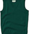 Photograph of Classroom Child Unisex Youth Unisex V- Neck Sweater Vest Green 56912-HUN