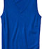 Photograph of Classroom Child's Unisex Youth Unisex V- Neck Sweater Vest Blue 56912-ROY