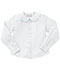 Photograph of Classroom Junior Junior LS Peter Pan Blouse White 57884-WHT