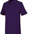 Photograph of Classroom Unisex Adult Unisex Short Sleeve Interlock Polo Purple 58914-DKPR
