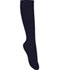 Photograph of Classroom Girl's Girls/Juniors Opaque Knee Hi Socks 3 PK Blue 5HF101-DNVY