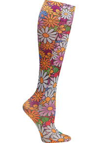 Celeste Stein CMPS Colorful Daisies (CMPS-2144)