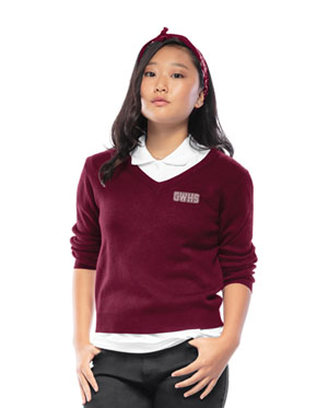 Classroom Youth Unisex Long Sleeve V-neck Sweater (56702-BUR) (56702-BUR)