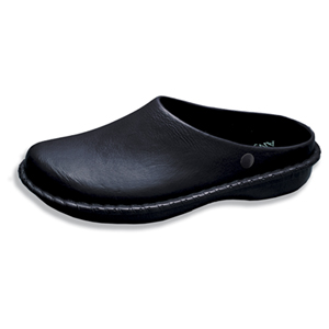Anywear Medical Footwear Unisex DBL Clog Black